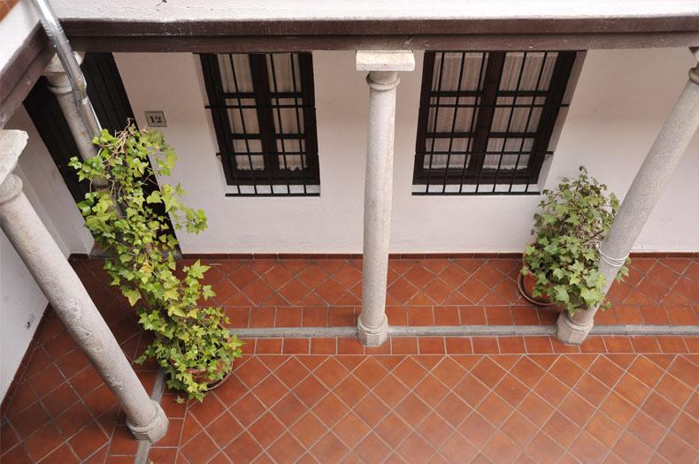 home_granada_patio_plantas_desde_arriba
